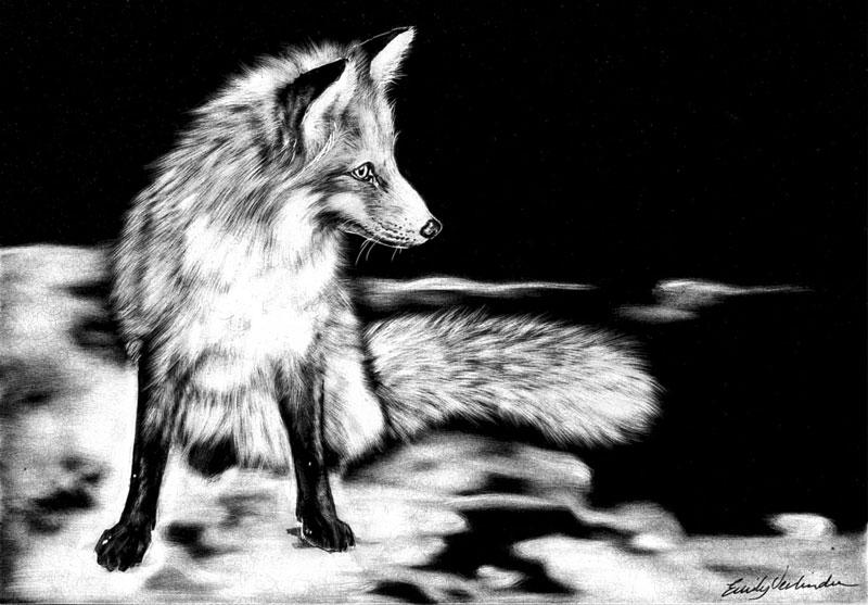 fox-sm