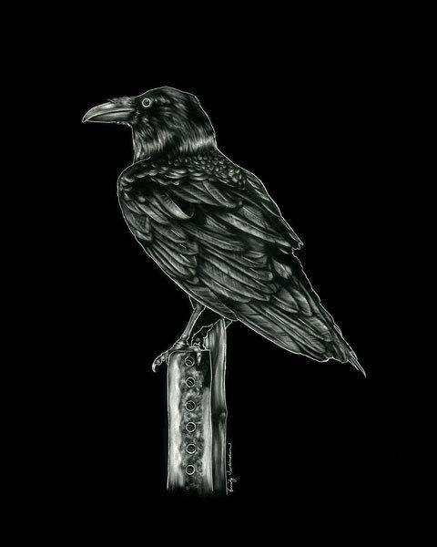 raven-cropped.jpg