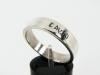 chamberlain-ring-david