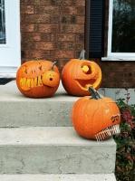 day-pumpkins-2
