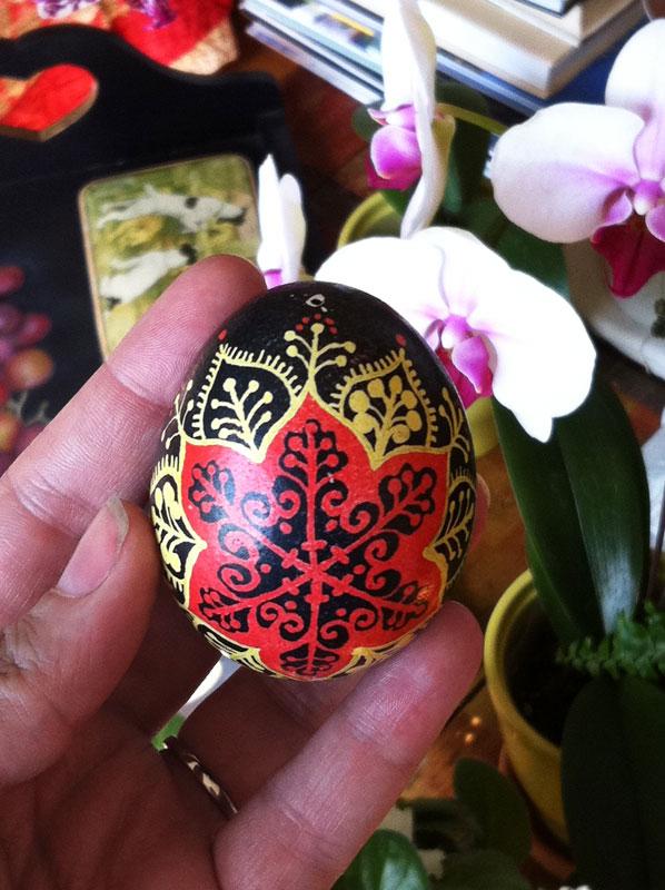 egg-top-sm