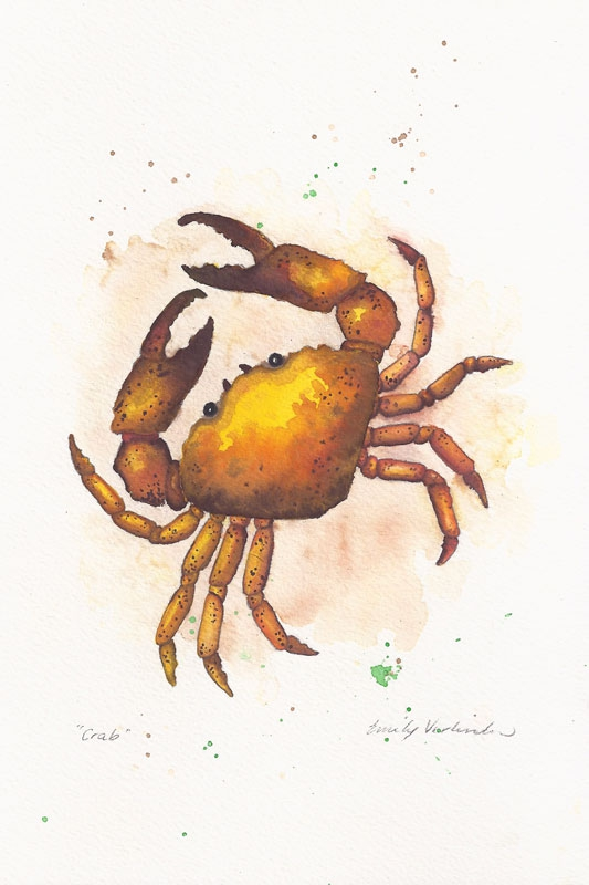 crab-web