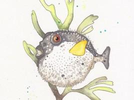Blowfish-web
